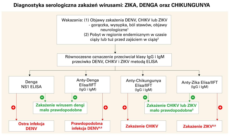 Diagnostyka serologiczna zakażeń wirusami: ZIKA, DENGA oraz CHIKUNGUNYA
