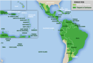 Obszary endemiczne wirusa dengi